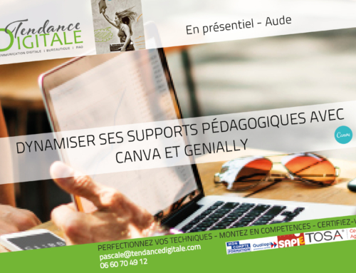 Formation:  Dynamiser ses supports avec Canva et Genially 3.02.22